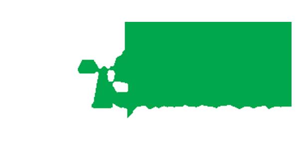 Lawyers 6